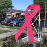 Pink Ribbon Art In Front Of Hillman